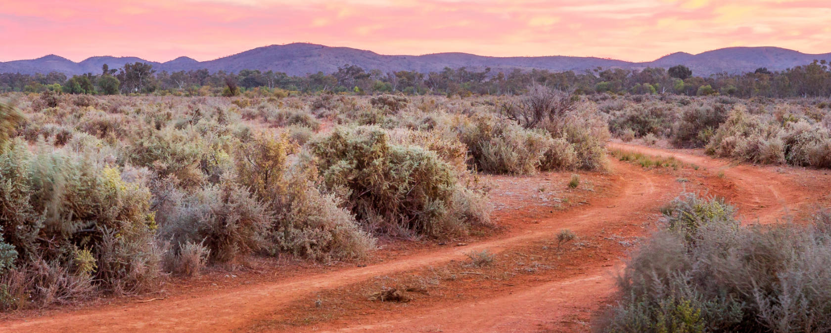 A red dirt road through Australian scrublands at sunset